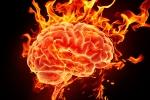 Våra hjärnor är skapta för att vi ska kunna lära oss nytt genom hela livet. Här ovan en bild på min hjärna när jag inhämtar ny kunskap en vanlig tisdagskväll.